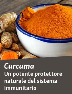 Proprietà antinfiammatorie naturali della curcumina e del pepe nero